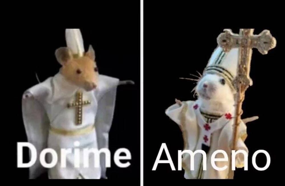 Meme do rato Dorime Ameno vira jogo para navegador, veja como jogar