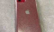 iPhone 11 perdido em lago é encontrado e funciona normalmente