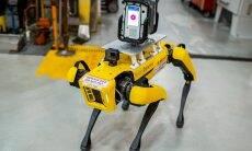 "Ford usa ""robô cachorro"" para mapear fábrica"
