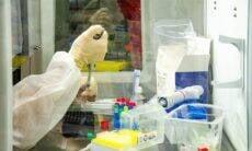 Fiocruz inicia testes com vacina BCG para combate ao coronavírus