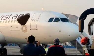 Airbus A320 sofre ataque de abelhas em aeroporto da Índia