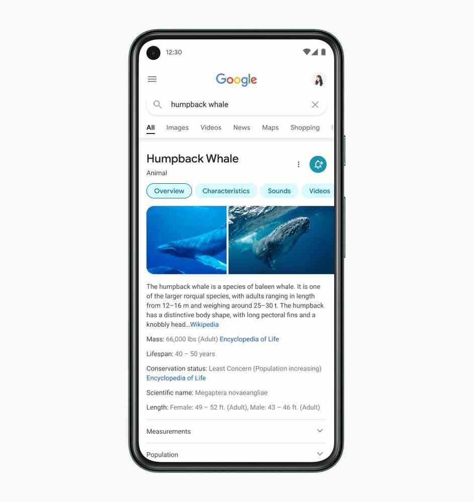 Nova aparência da Busca do Google