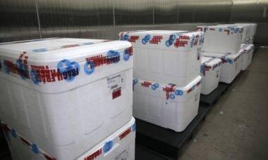 Covid-19: Butantan pede à Anvisa registro de mais 4,8 milhões de doses da vacina