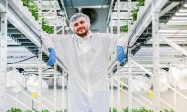 Com tecnologia avançada, Cannerald lidera pesquisas internacionais da cannabis medicinal . Foto: Divulgação