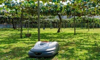 Honda Grass Miimo é uma mistura de off-road e cortador de grama robótico