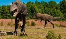 Escavação em rodovia de SP revela fragmentos de dinossauro. Foto: Pixabay