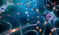 Cientistas criam computador capaz de aprender como o cérebro humano