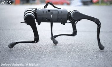 Empresa chinesa viraliza em vídeo com exército de cachorros-robô