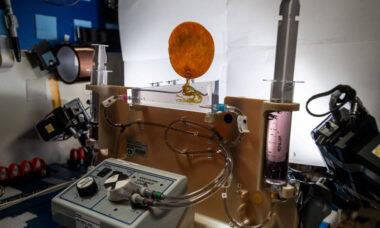 Projeto da Nasa estuda técnicas para plantio no espaço