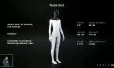 tesla bot reprodução