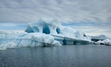 Antártida já sofreu com incêndios florestais no passado, aponta estudo brasileiro