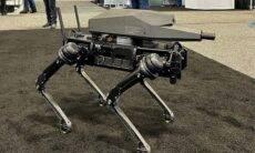 Empresa cria cão robô equipado com fuzil